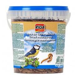 Vers de farine pour oiseaux de la nature