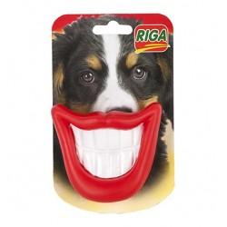 Sourire belle gueule jouet chien