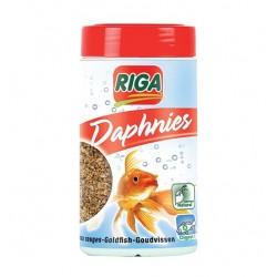 DAPHNIES - 38 g